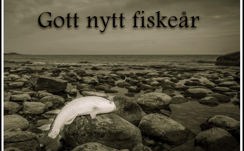 Gott nytt fiskeår