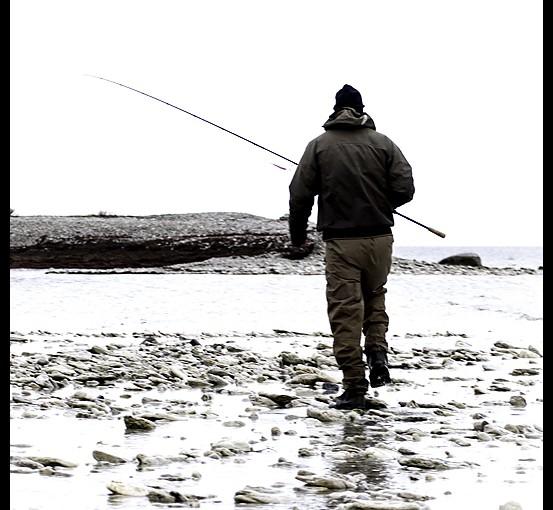 Kalas på kusten